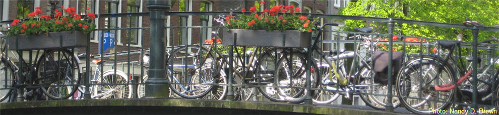 netherlands-bikes-on-bridge
