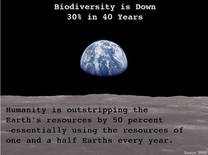 biodiversity is down