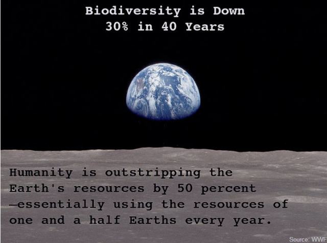 biodiversity is down