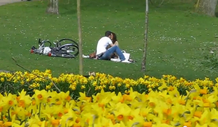 netherlands - bicyce lovers