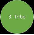 six circles - 3 Tribe